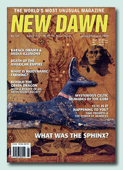 New Dawn Magazine : The Sphinx Mystery